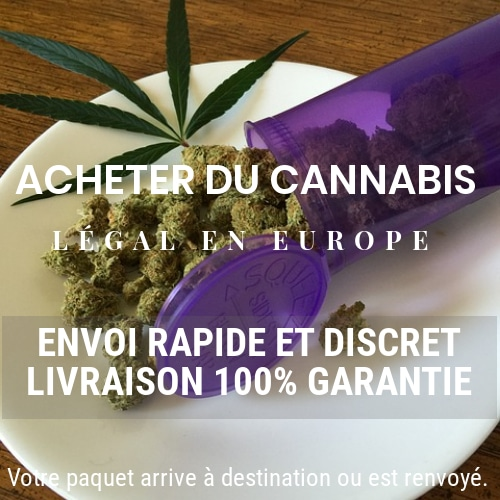 CBD-Cannabis-livraison-legal-en-FRANCE